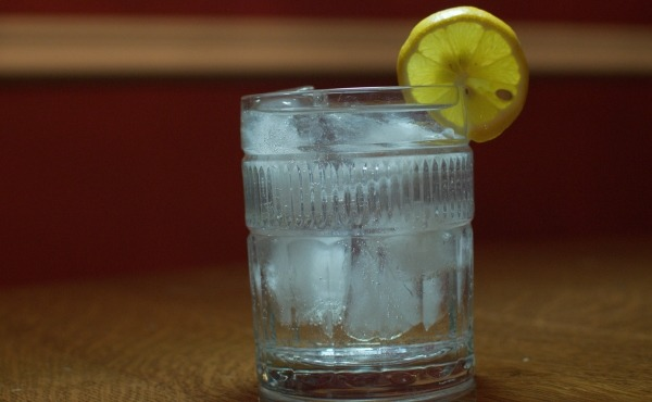 Gin and Tonic Cocktail with Lemon Wedge