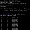 list of disks in linux