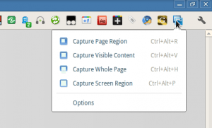 Extension to capture webpage in Google Chrome