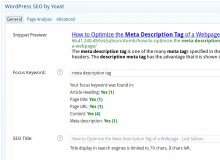 Wordpress SEO description tag