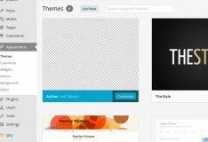 Custom themes in Wordpress